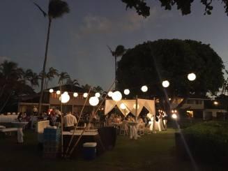 Nuntă în Hawaii 1